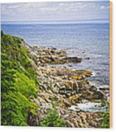 Atlantic Coast In Newfoundland Wood Print