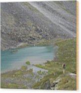 Backpacking In Alaska Talkeetna Wood Print
