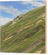 Engineer Pass In Colorado  Wood Print