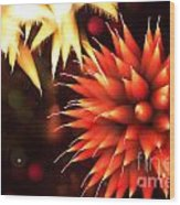 Fireworks Art Wood Print