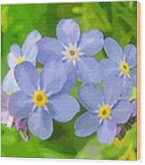 Forget-me-not Wood Print