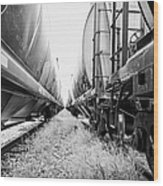 freight grain trucks on former canadian pacific railway now great sandhills railway through leader S Wood Print