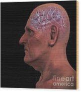 Geriatric Brain Wood Print