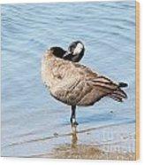 Goose Wood Print