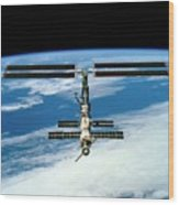 International Space Station Wood Print