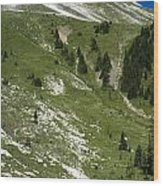 Kindersley Pass Wood Print