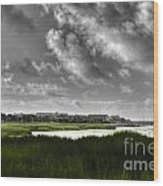 Southern Tall Marsh Grass Wood Print