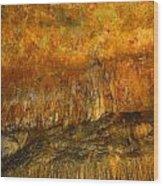 Luray Cavern Wood Print