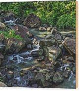Mambukal Wood Print