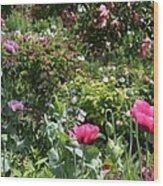 Monets Garden - Giverney - France Wood Print