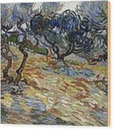 Olive Trees Wood Print
