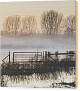 Panorama Landscape Of Lake In Mist With Sun Glow At Sunrise Wood Print
