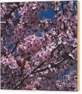 Plum Tree Flowers Wood Print