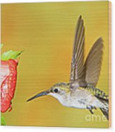 Ruby Throated Hummingbird Female Wood Print
