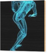 Skeletal Structure Of Rugby Player Wood Print