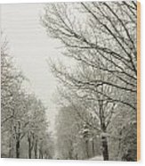 Snow Covered Road And Trees After Winter Storm Wood Print