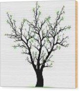 Spring Tree Wood Print