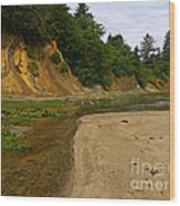 Sunset Bay State Park Wood Print