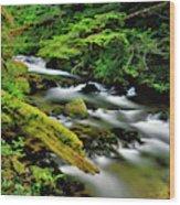 Usa, Oregon, Mt Hood National Forest Wood Print