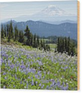 Wa, Goat Rocks Wilderness, Wildflower Wood Print