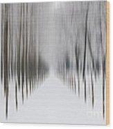 Winter Road Wood Print