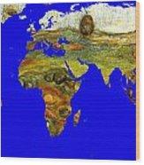 Modern World Map  Wood Print
