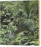Jungle 5 Wood Print