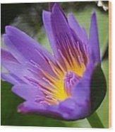 Lotus Wood Print by Gornganogphatchara Kalapun