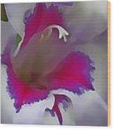 7817 Flower Wood Print