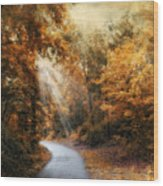 Late Autumn Trail Wood Print