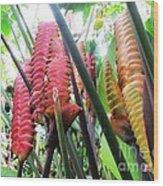 Barriles Flower Wood Print