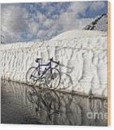 Bicycle Wood Print