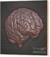 Clay Model Of Brain Wood Print