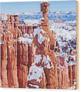 Eroded Rocks In A Canyon, Bryce Canyon Wood Print