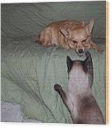 Foxy And Ninja Wood Print