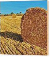 Hay Wood Print