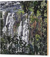 Iguazu Falls - South America Wood Print