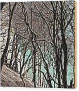 Island Of Moen In Denmark Wood Print