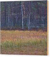 Koirajarvi Wood Print
