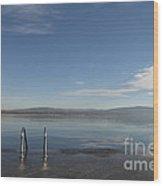Lakefront Wood Print