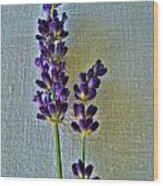 Lavender On Linen Wood Print