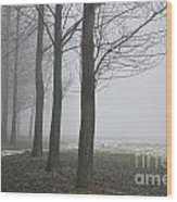 Trees With Fog Wood Print