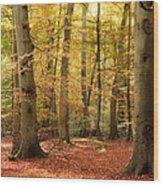 Vibrant Autumn Fall Forest Landscape Image Wood Print