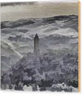 View Of Wallace Monument From The Heights Of The Stirling Castle Wood Print