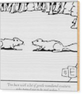 I've Been With A Lot Of Gentle Woodland Creatures Wood Print