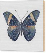 89 Red Cracker Butterfly Wood Print