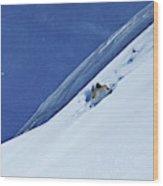 A Athletic Skier Rips Fresh Deep Powder Wood Print