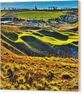 #9 At Chambers Bay Golf Course - Location Of The 2015 U.s. Open Tournament Wood Print by David Patterson
