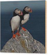 Atlantic Puffins Fratercula Arctica Wood Print