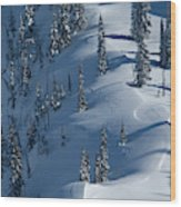 Backcountry Ski Traverse In Glacier Wood Print